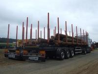 Полуприцеп лесовозный ZASŁAW для ПЕРЕВОЗКИ ДЕРЕВА – передвижные стойки, длиной 12,4 м